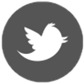 Managed Wordpress Support Services on Twitter